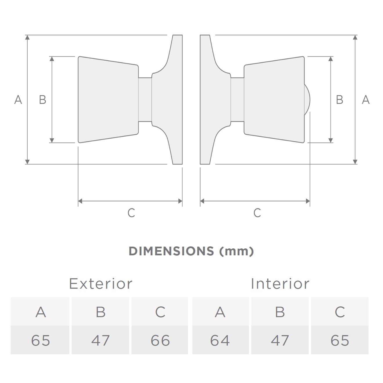 tulip-dimension-geo